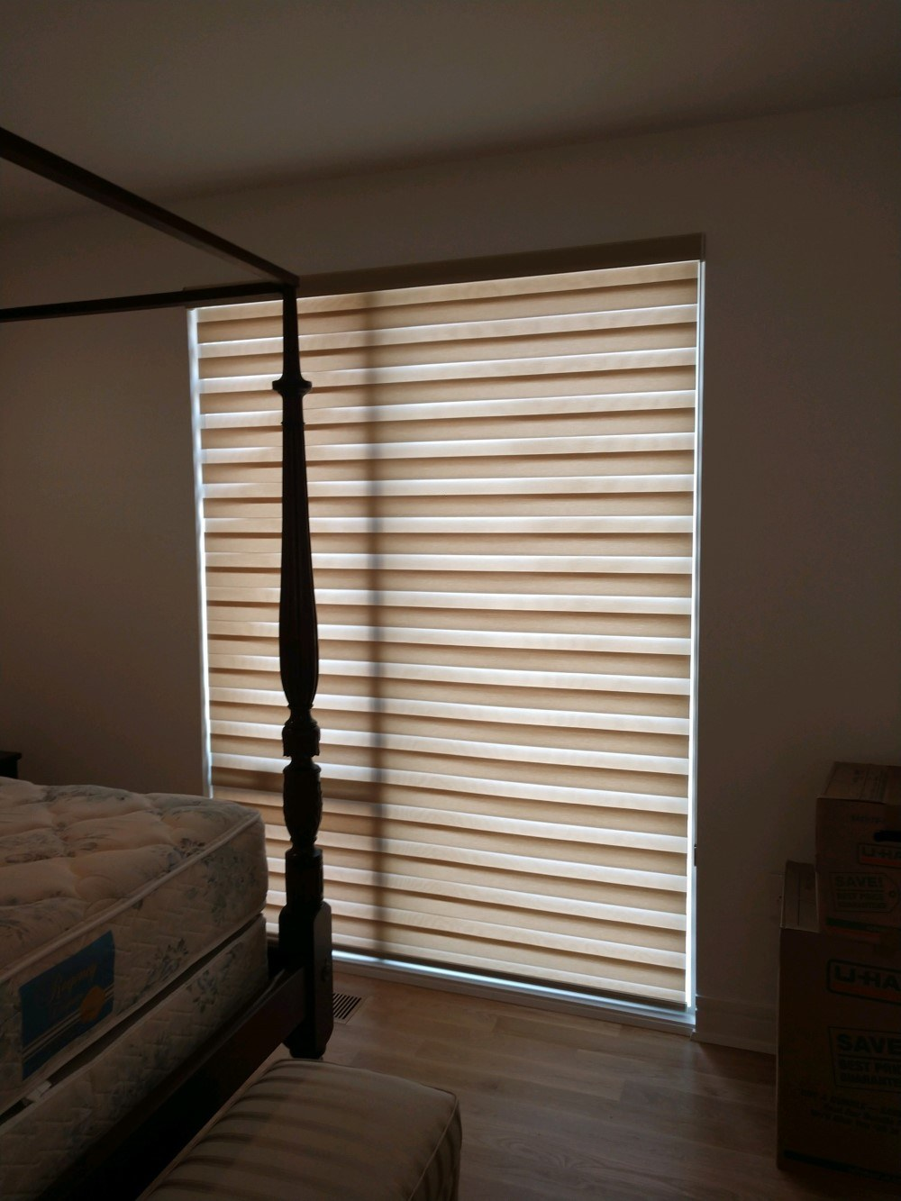 Alta Dual Shades Installed In Raleigh Nc